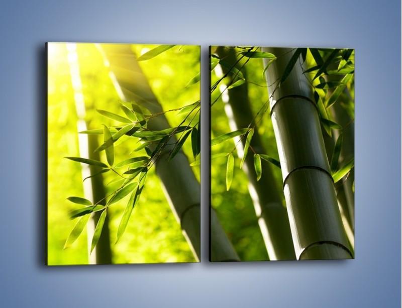 Obraz na płótnie – Twarde łodygi bambusa – dwuczęściowy prostokątny pionowy KN1314A