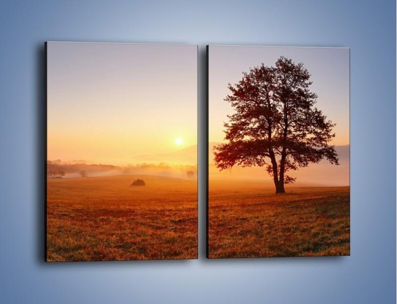 Obraz na płótnie – Krajobraz utopiony we mgle – dwuczęściowy prostokątny pionowy KN1331A