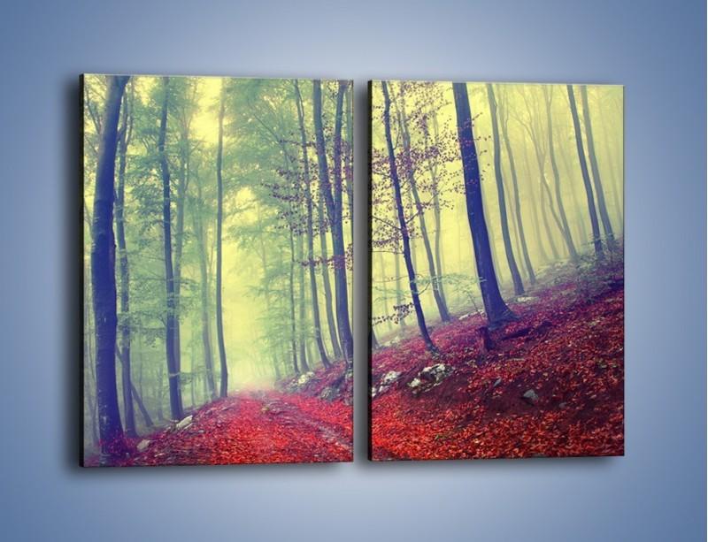 Obraz na płótnie – Bardzo wąską ścieżką leśną – dwuczęściowy prostokątny pionowy KN1335A
