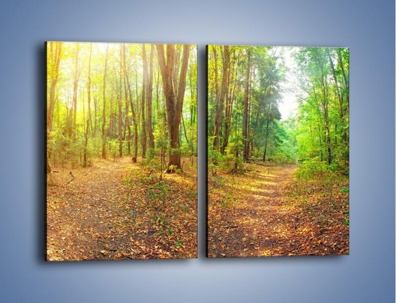 Obraz na płótnie – Przejrzysty piękny las – dwuczęściowy prostokątny pionowy KN1344A