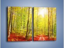Obraz na płótnie – Brzózki liście i las – dwuczęściowy prostokątny pionowy KN1345A