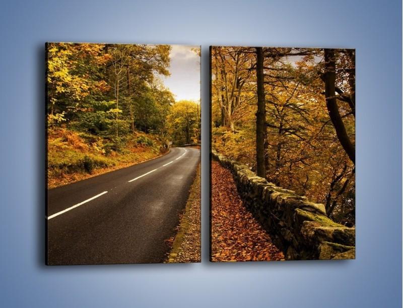 Obraz na płótnie – Asfaltową droga przez las – dwuczęściowy prostokątny pionowy KN169