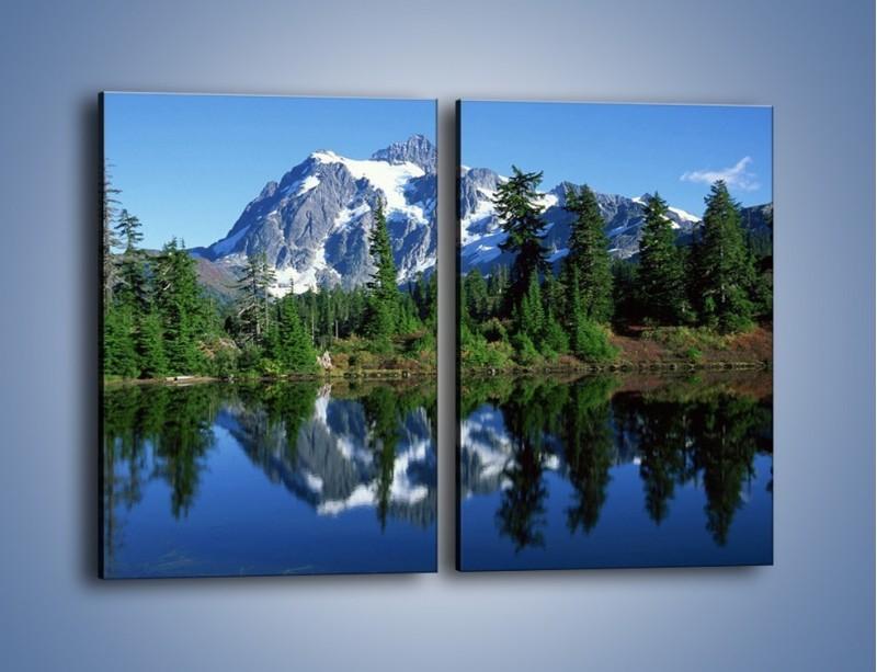 Obraz na płótnie – Zimowe pozostałości w górach – dwuczęściowy prostokątny pionowy KN225