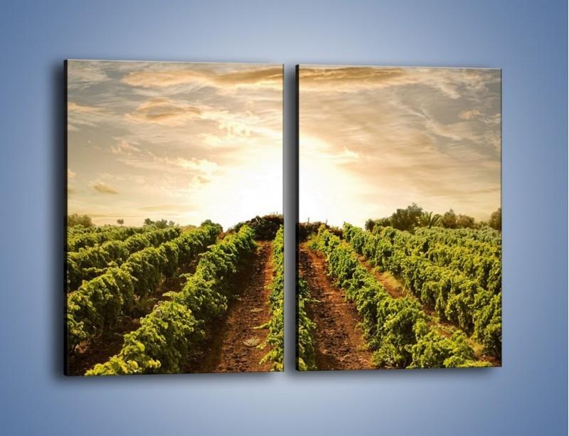 Obraz na płótnie – Spacer między uprawami – dwuczęściowy prostokątny pionowy KN227