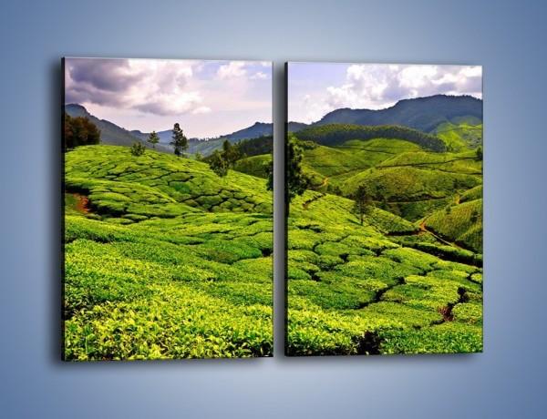Obraz na płótnie – Góry całe w zieleni – dwuczęściowy prostokątny pionowy KN246