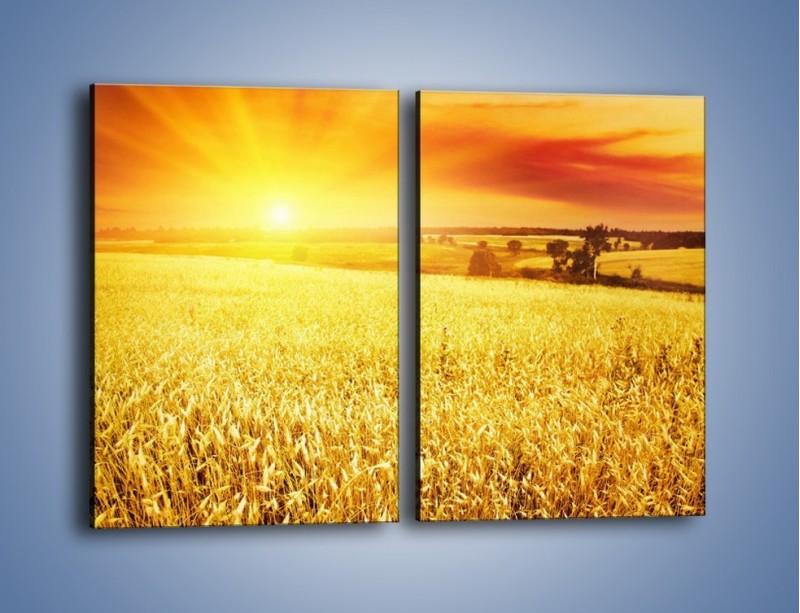 Obraz na płótnie – Zboże złote jak słońce – dwuczęściowy prostokątny pionowy KN398