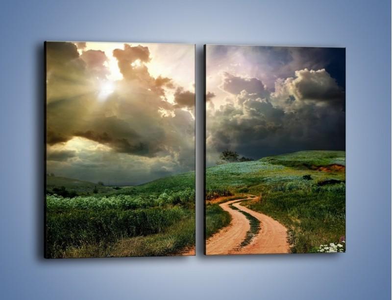 Obraz na płótnie – Krętą ścieżką przez łąkę – dwuczęściowy prostokątny pionowy KN468