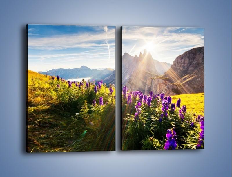 Obraz na płótnie – Góry w poświacie słońca – dwuczęściowy prostokątny pionowy KN502