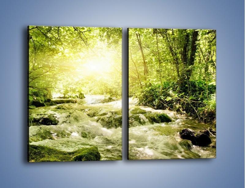 Obraz na płótnie – Wzburzony potok leśny – dwuczęściowy prostokątny pionowy KN508