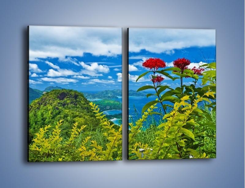 Obraz na płótnie – Bordowe kwiaty w górskim krajobrazie – dwuczęściowy prostokątny pionowy KN561