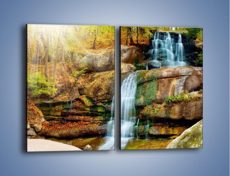 Obraz na płótnie – Leśne podłoże późną jesienią – dwuczęściowy prostokątny pionowy KN563