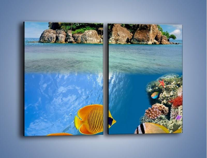 Obraz na płótnie – Podwodny świat na wyspie – dwuczęściowy prostokątny pionowy KN586