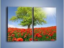 Obraz na płótnie – Cała łąka maków – dwuczęściowy prostokątny pionowy KN623