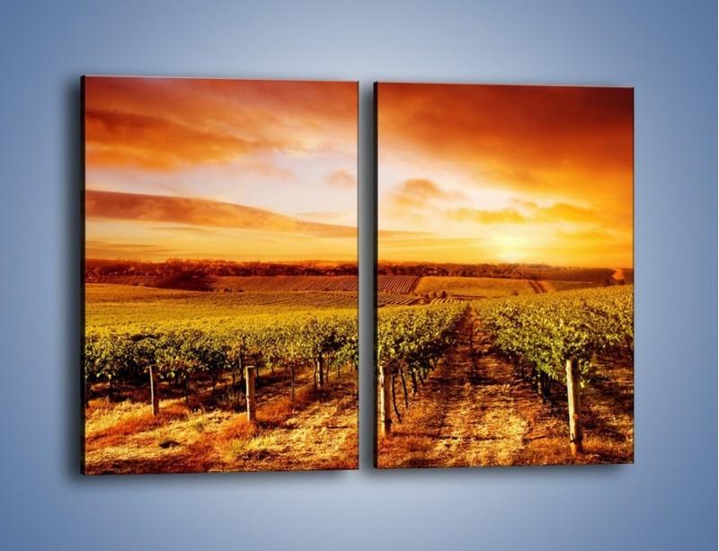 Obraz na płótnie – Ziemia i uprawy – dwuczęściowy prostokątny pionowy KN673