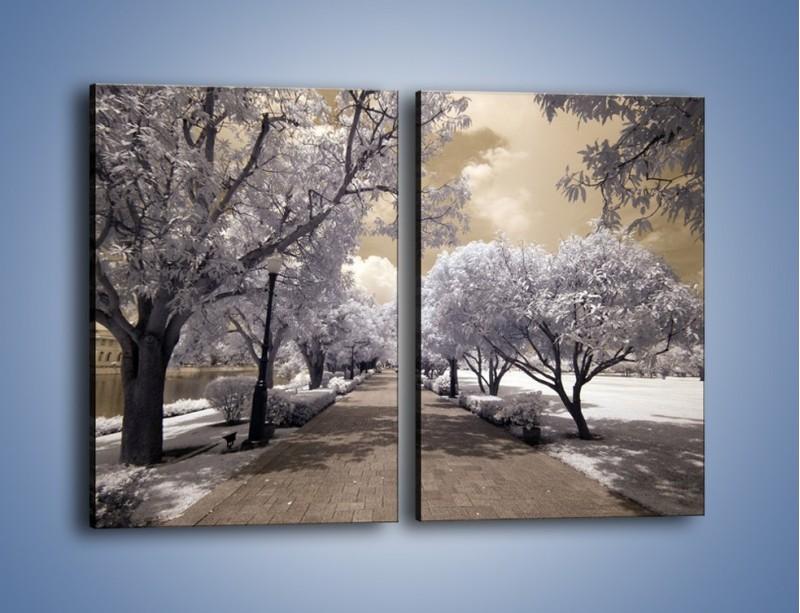 Obraz na płótnie – Parkowa aleja w sepii – dwuczęściowy prostokątny pionowy KN734