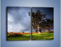 Obraz na płótnie – Burzowe chmury nad polaną – dwuczęściowy prostokątny pionowy KN748