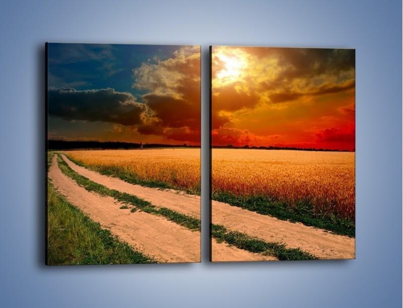Obraz na płótnie – Zbożowa polana i jej cały urok – dwuczęściowy prostokątny pionowy KN776