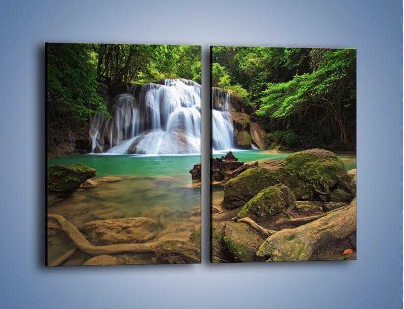 Obraz na płótnie – Drzewa schowane za wodospadem – dwuczęściowy prostokątny pionowy KN792
