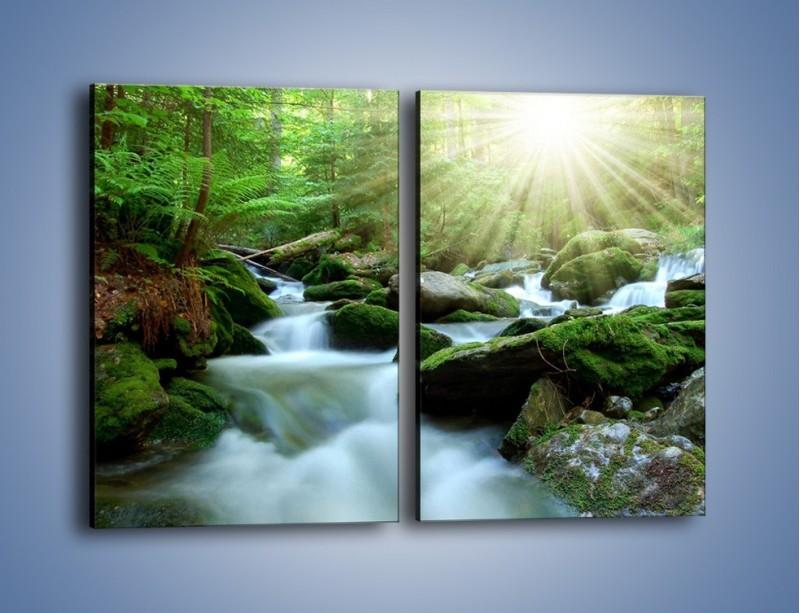 Obraz na płótnie – Silny potok w środku lasu – dwuczęściowy prostokątny pionowy KN861