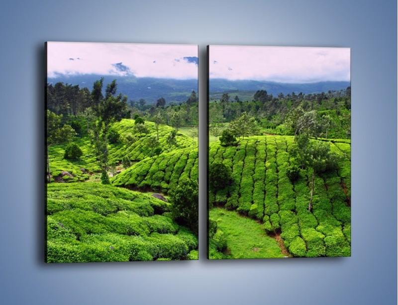 Obraz na płótnie – Rozległa zielona kraina – dwuczęściowy prostokątny pionowy KN872