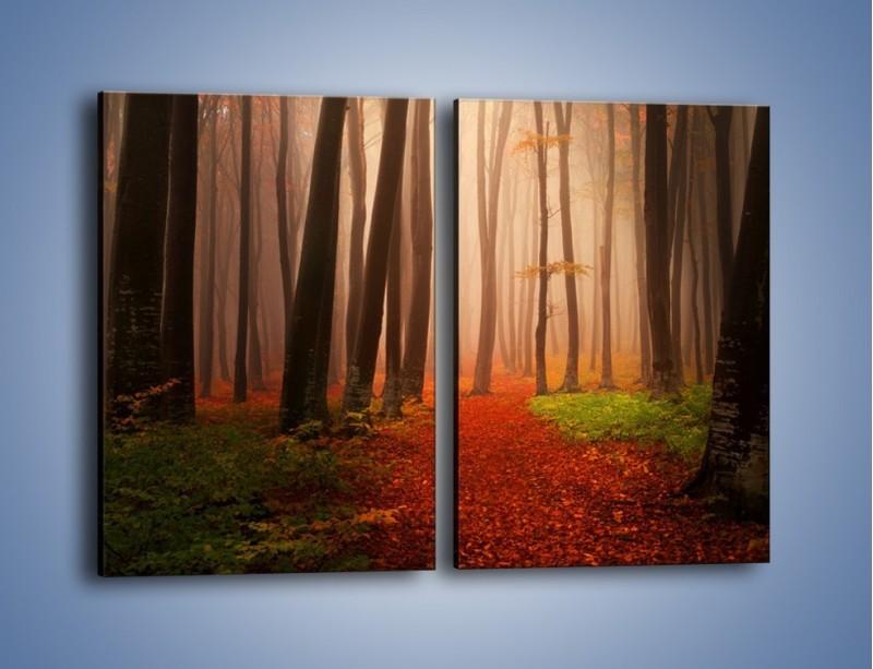 Obraz na płótnie – Las pełen tajemnic – dwuczęściowy prostokątny pionowy KN909