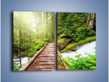 Obraz na płótnie – Bezpieczna droga przez las – dwuczęściowy prostokątny pionowy KN922