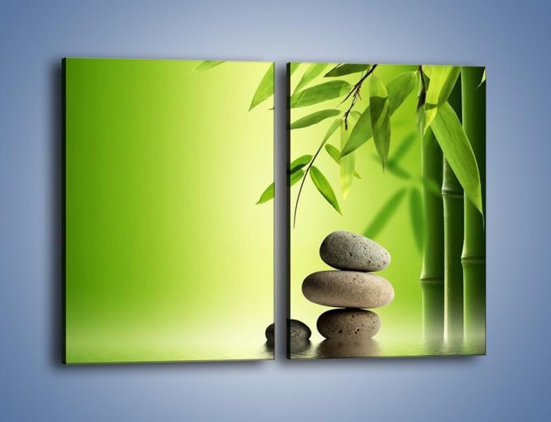 Obraz na płótnie – Kamień i roślinka – dwuczęściowy prostokątny pionowy KN954