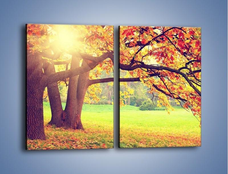 Obraz na płótnie – Jesienią w parku też jest pięknie – dwuczęściowy prostokątny pionowy KN967