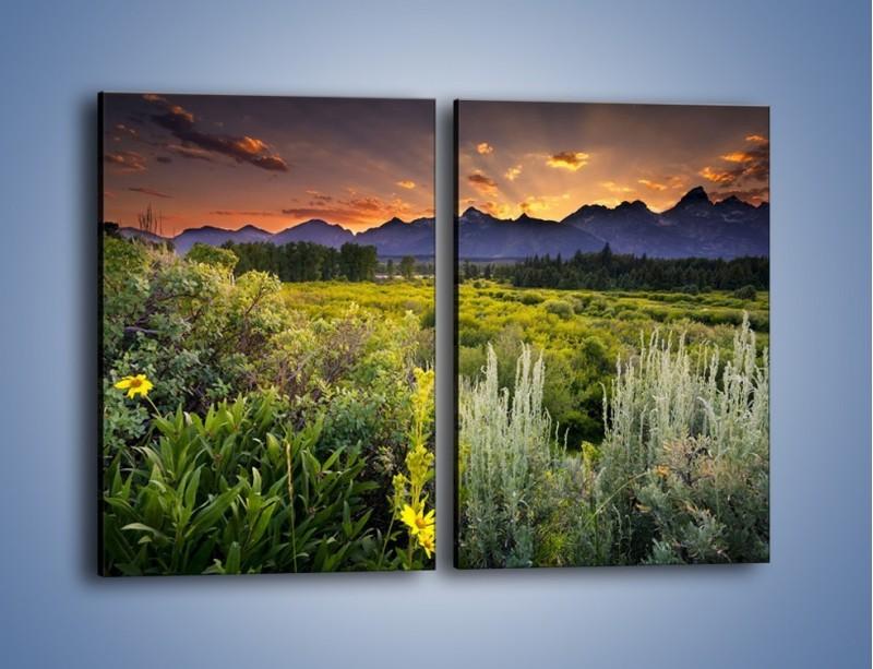 Obraz na płótnie – Wieczorny spokój na polanie – dwuczęściowy prostokątny pionowy KN987