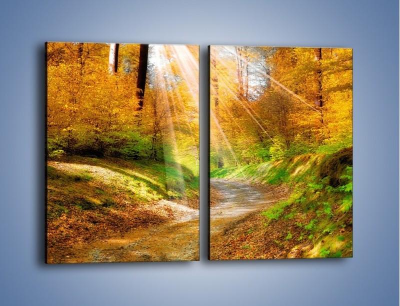 Obraz na płótnie – Promienną i słoneczną ścieżką przez las – dwuczęściowy prostokątny pionowy KN989
