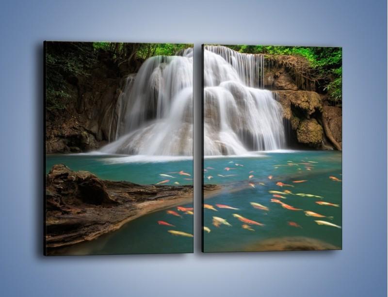 Obraz na płótnie – Wodospad i kolorowe rybki – dwuczęściowy prostokątny pionowy KN994