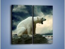 Obraz na płótnie – Donośny krzyk polarnego niedźwiedzia – dwuczęściowy prostokątny pionowy Z114