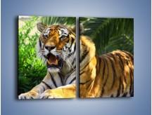Obraz na płótnie – Cała duma tygrysa – dwuczęściowy prostokątny pionowy Z199