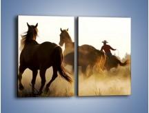 Obraz na płótnie – Cowboy wśród koni – dwuczęściowy prostokątny pionowy Z206