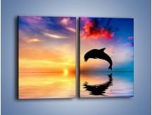Obraz na płótnie – Delfin i jego odbicie – dwuczęściowy prostokątny pionowy Z268