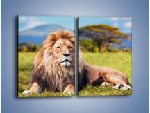 Obraz na płótnie – Dostojny lew na sawannie – dwuczęściowy prostokątny pionowy Z282