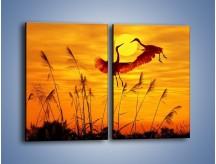 Obraz na płótnie – Czaple i zachód słońca – dwuczęściowy prostokątny pionowy Z302