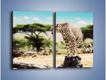 Obraz na płótnie – Cała zwinność geparda – dwuczęściowy prostokątny pionowy Z315
