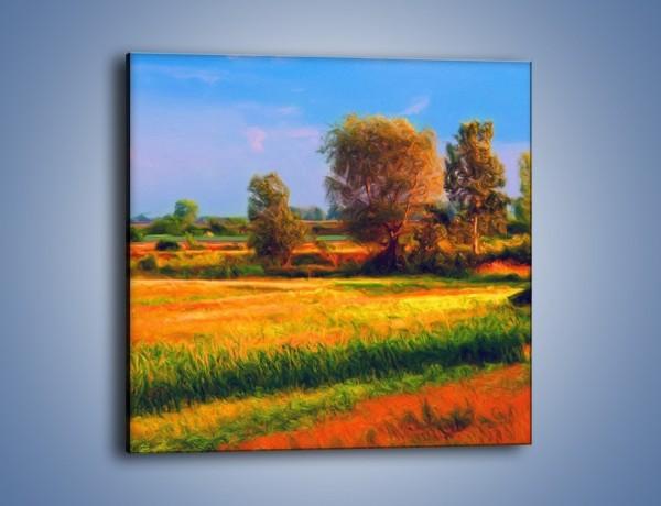 Obraz na płótnie – Kolory naszej wsi – jednoczęściowy kwadratowy GR009