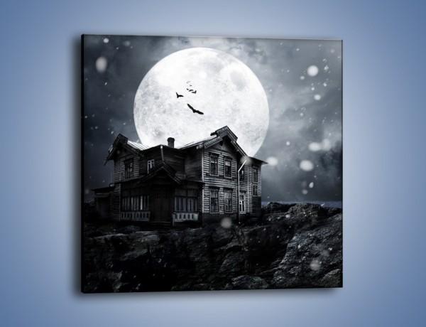 Obraz na płótnie – Nietoperze i pełnia księżyca – jednoczęściowy kwadratowy GR012