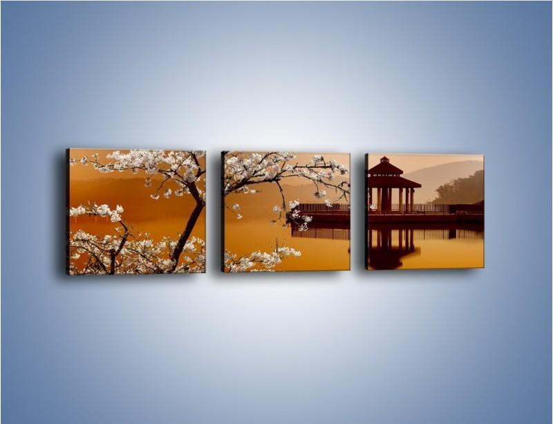 Obraz na płótnie – Kwiaty na tle Sun Moon Lake – trzyczęściowy AM301W1
