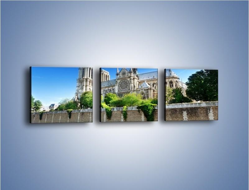 Obraz na płótnie – Katedra Notre-Dame – trzyczęściowy AM305W1
