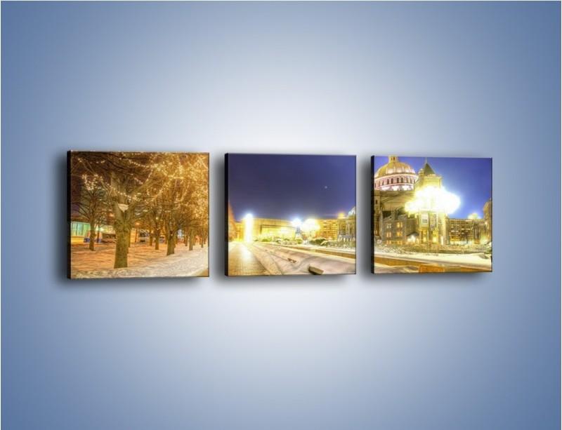 Obraz na płótnie – Zaśnieżona aleja bostońska – trzyczęściowy AM317W1