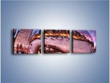 Obraz na płótnie – Cloud Gate w Chicago – trzyczęściowy AM352W1