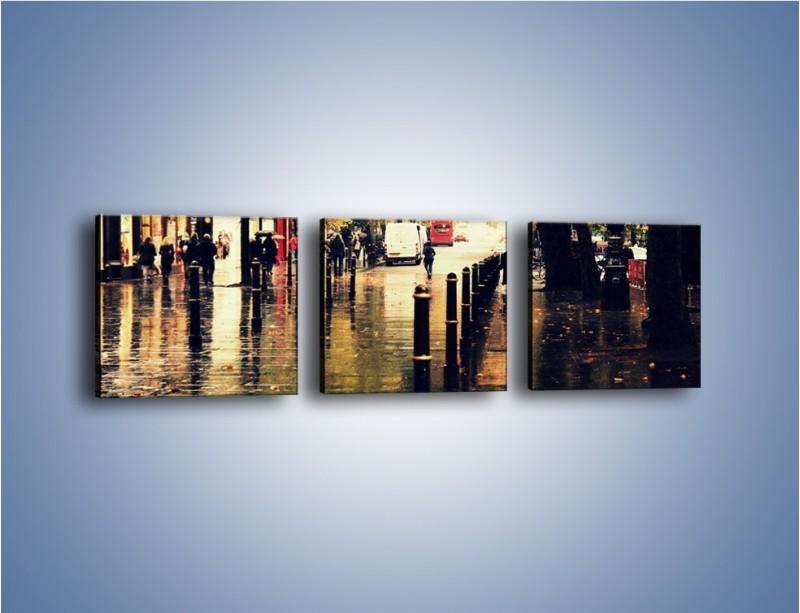 Obraz na płótnie – Deszczowa jesień w Moskwie – trzyczęściowy AM383W1