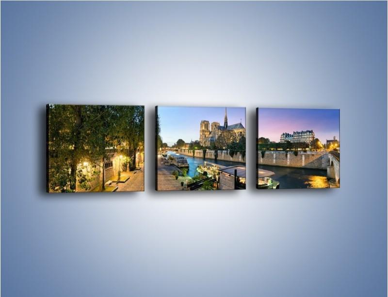 Obraz na płótnie – Katedra Notre Dame – trzyczęściowy AM405W1