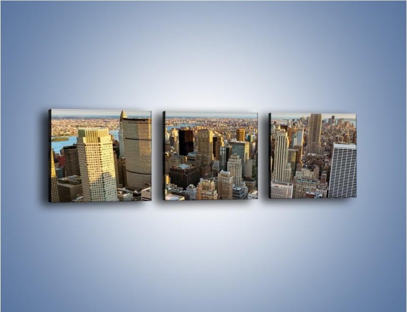 Obraz na płótnie – Manhattan w Nowym Yorku – trzyczęściowy AM412W1