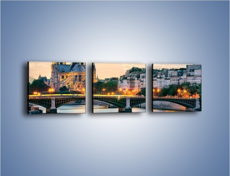 Obraz na płótnie – Katedra Notre Dame – trzyczęściowy AM454W1