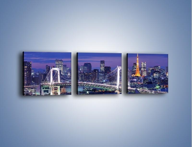 Obraz na płótnie – Tęczowy Most w Tokyo – trzyczęściowy AM460W1