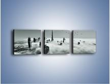 Obraz na płótnie – Centrum Dubaju we mgle – trzyczęściowy AM502W1